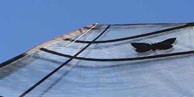 Moth Wings Carbon Fibre sail